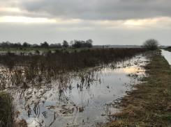 Ditch flood 2019